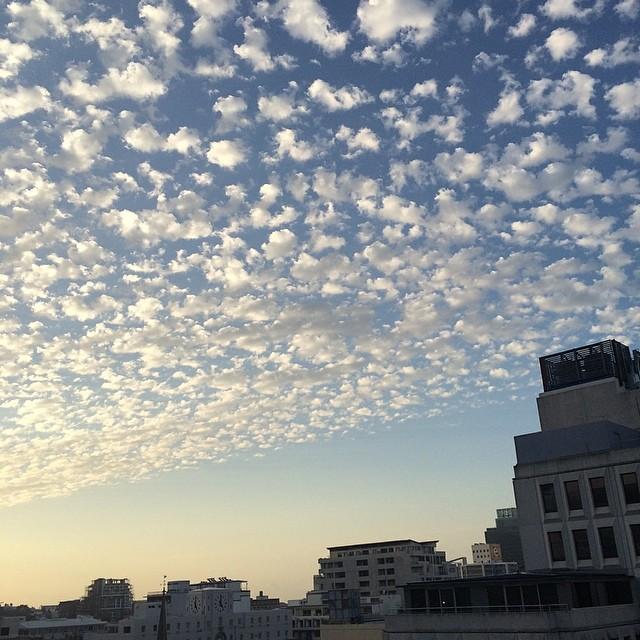 #cloudappreciation #羊雲 #sunset