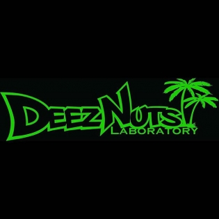 DEEZ NUTS decals on sale now. Www.getnutslab.bigcartel.com They make great stocking stuffers for a laugh. 10in long. Will be sent out in time for Christmas! #deeznuts #getnuts #getnutslab
